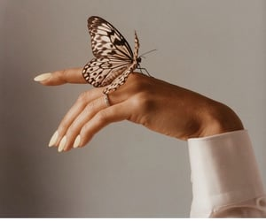 art, butterfly, and nails image