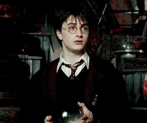 aesthetic, daniel radcliffe, and gryffindor image