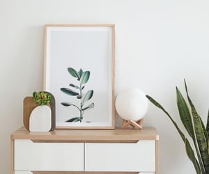 bedroom, plant, and wood image