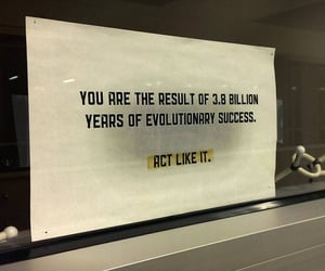 evolution, words, and failure image