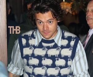 fine line, gucci, and Harry Styles image