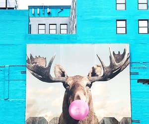 blue, mural, and building image
