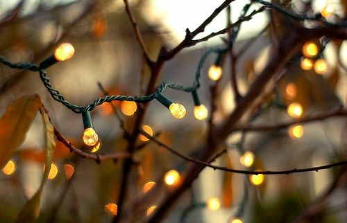 article, autumn, and christmas image