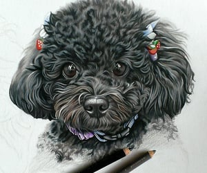 art, color pencil, and drawings image