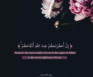 arabic, dz, and quran image
