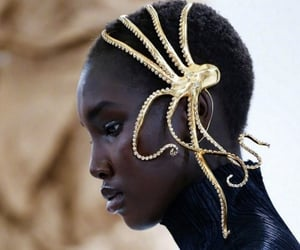 fashion, gold, and octopus image