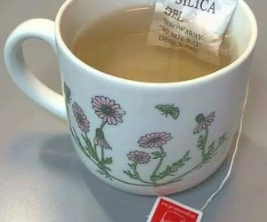 tea and meme image