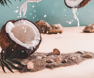 background, beach, and coconut image