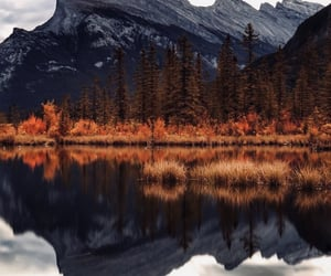 autumn, bliss, and canada image