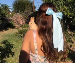 bow, brown hair, and bunny image