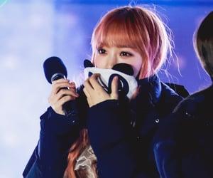 girl groups, kim chaewon, and izone image