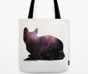 bags, cat, and galaxy image