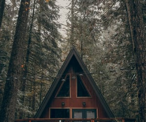 architecture, cabin, and fall image