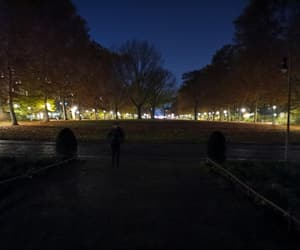 autumn, lights, and silence image