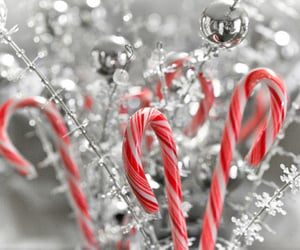 christmas and candy canes image