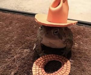 brown, cowboy, and dirt image