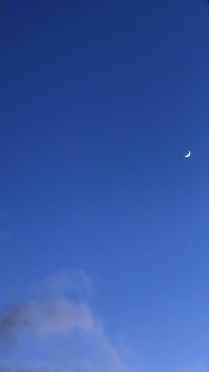 blue, moon, and nature image