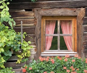 cottagecore, flowers, and rp image
