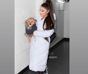 fashion, girl, and ariana grande image
