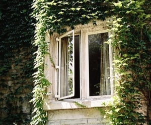 window, green, and house image
