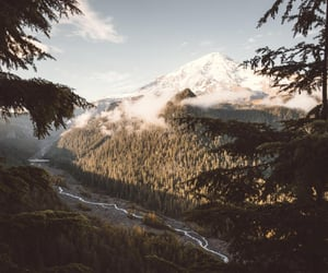 nature, green, and mountain image