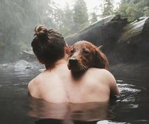 dog, boy, and nature image
