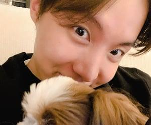 boy, dog, and kpop image