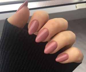 nails, manicure, and nail polish image