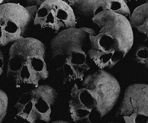 calavera, creepy, and skull image