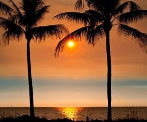 beach, nature, and photograhy image
