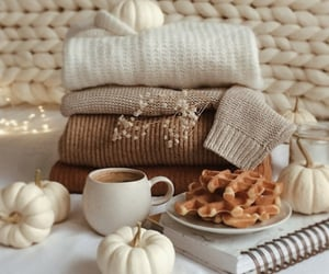 aesthetic, autumn, and beige image
