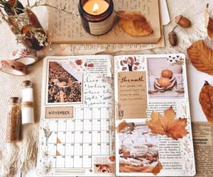 autumn, november, and leaves image