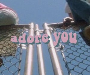 header, twitter, and adore you image
