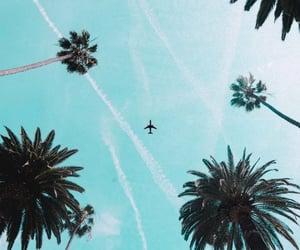 airplane, celular, and cielo image