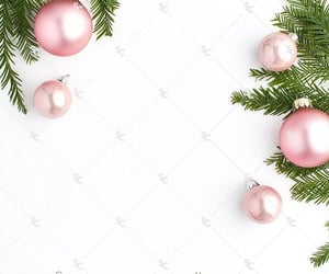 celebrate, christmas, and decor image