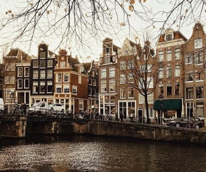 amsterdam, brown, and fall image