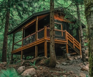 cabin, woods, and forest image