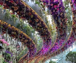 beautiful, colourfull, and flowerpower image