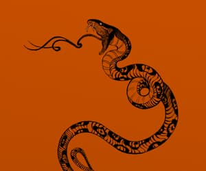 art, reptile, and serpent image