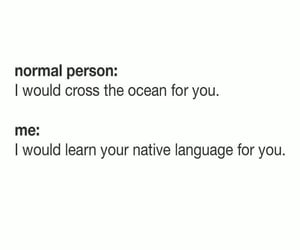 bilingual, funny, and me image