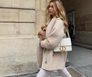 beige, dog, and bag image