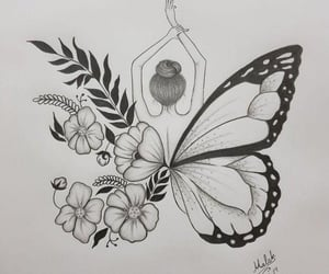 butterfly, drawing, and sketches image