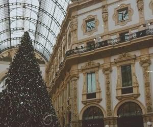 christmas, christmas tree, and city image