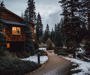forest, snow, and house image