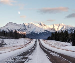 winter, nature, and road image