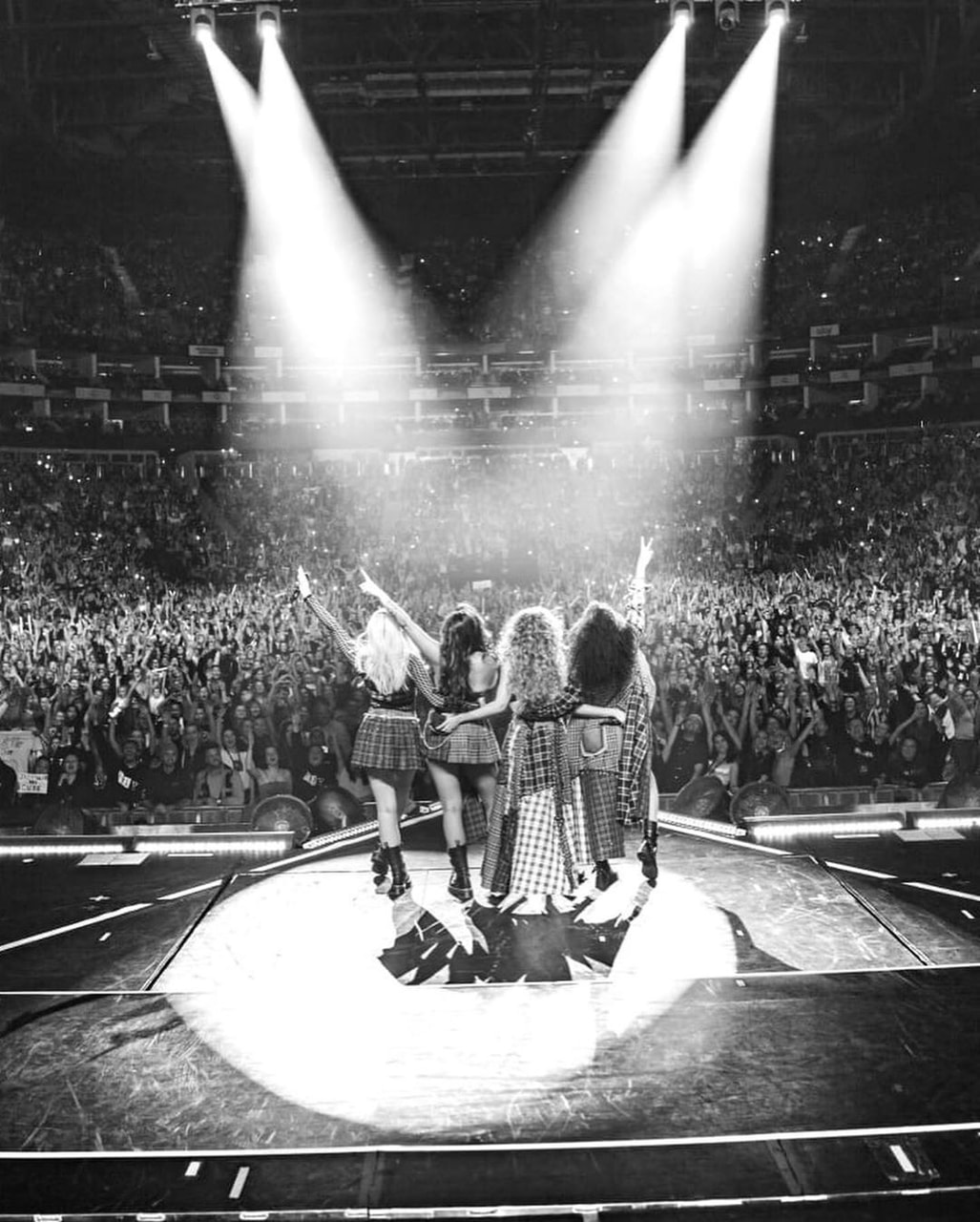 black and white and little mix image