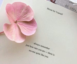 quotes, flowers, and book image