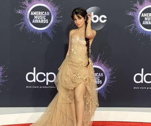 camila cabello and red carpet image