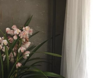 aesthetic, room, and flowers image