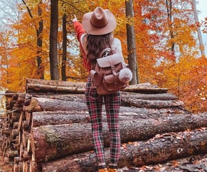 fashion, tree, and forest image